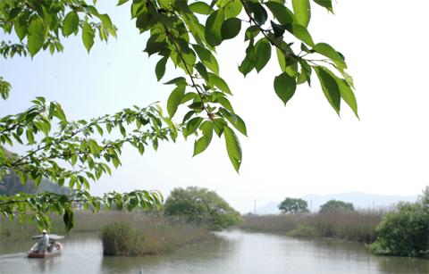 Maruyama1